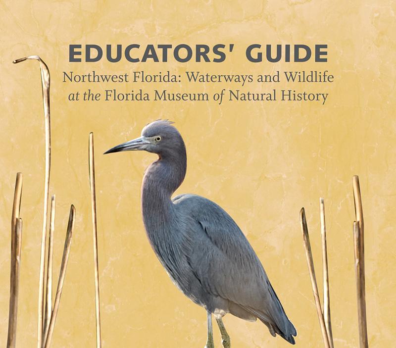 NW Florida Educators Guide