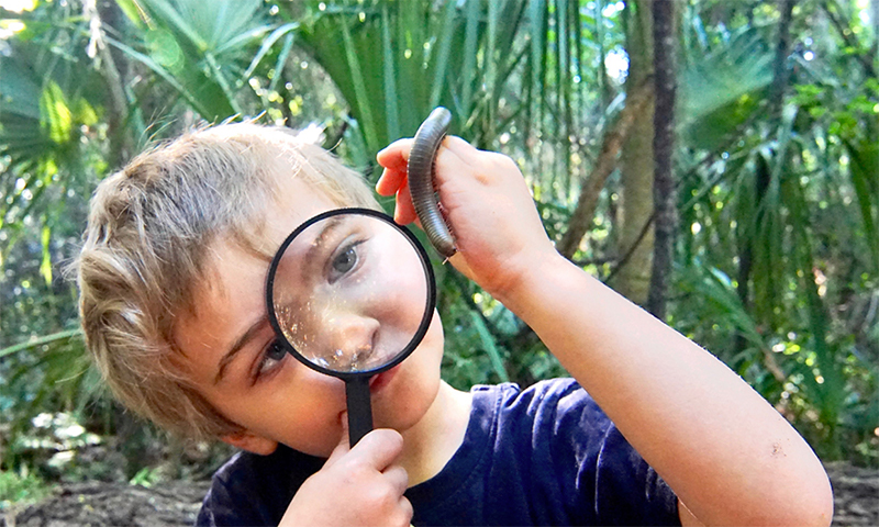 boy looking at millipede through a hand lens
