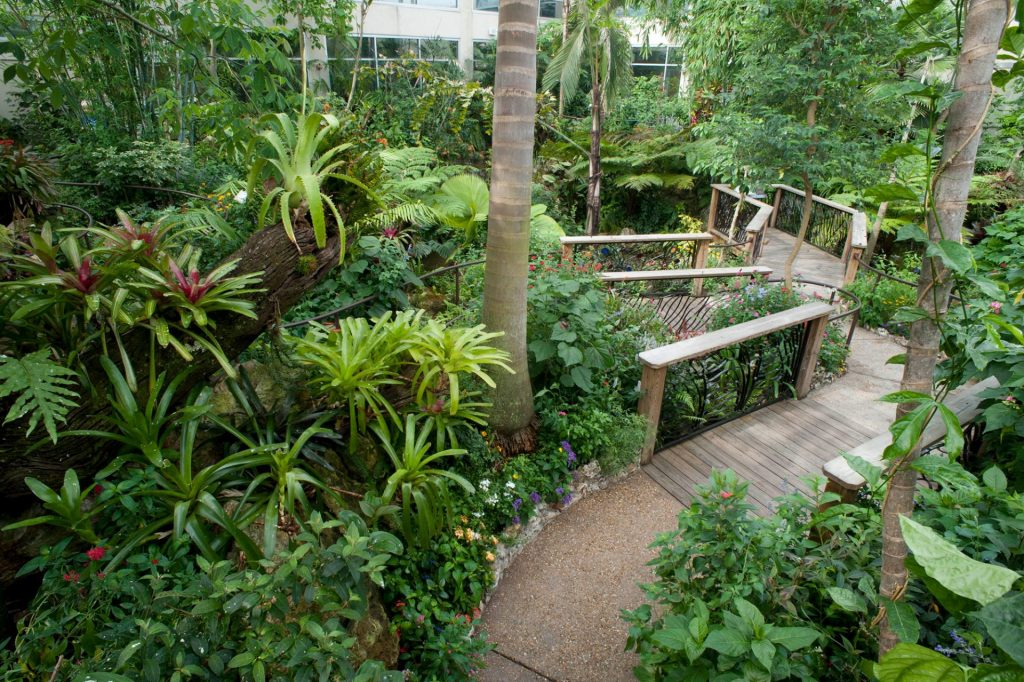 landscape and foliage around a winding path with wooden railings