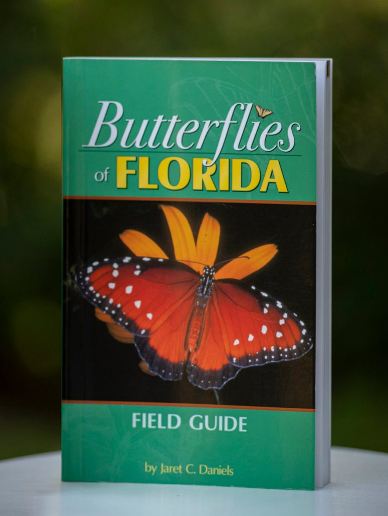 book cover with large butterfly on it