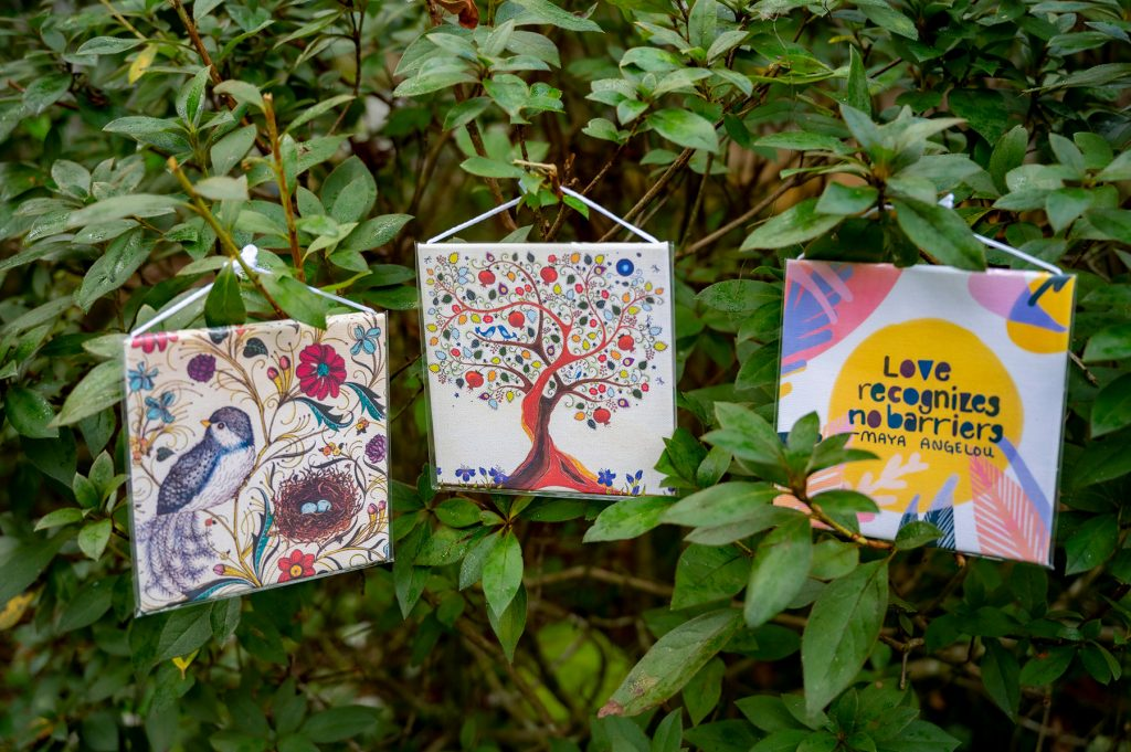 several gift cards hung on a bush