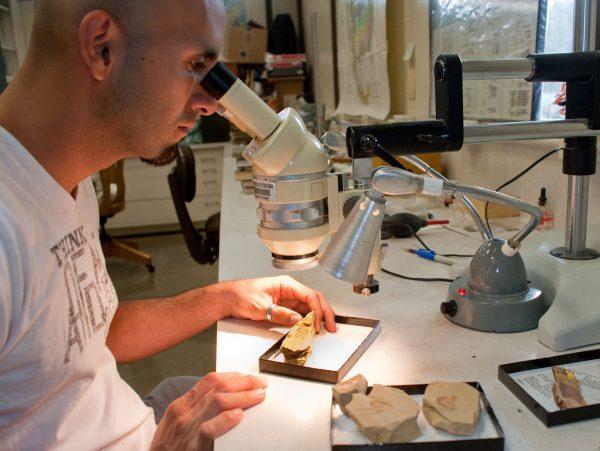 Fabiany Herrera in the lab