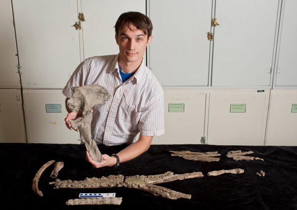 Alex Hastings with croc pelvis
