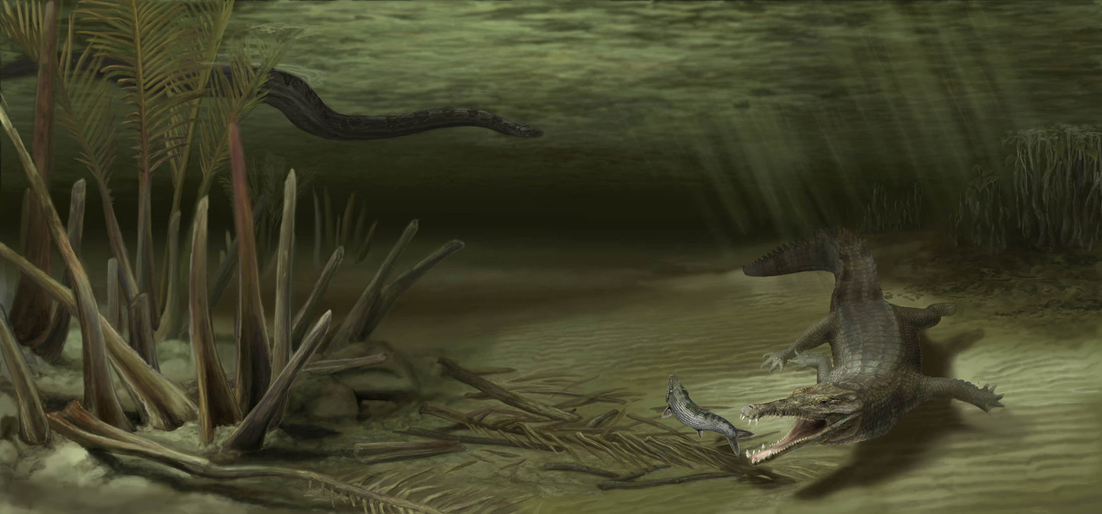 croc and titanoboa