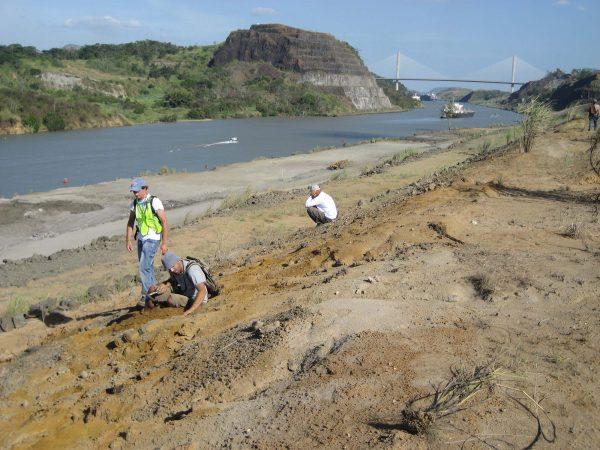 Alex Hastings and Fabiany Herrera dig in Panama