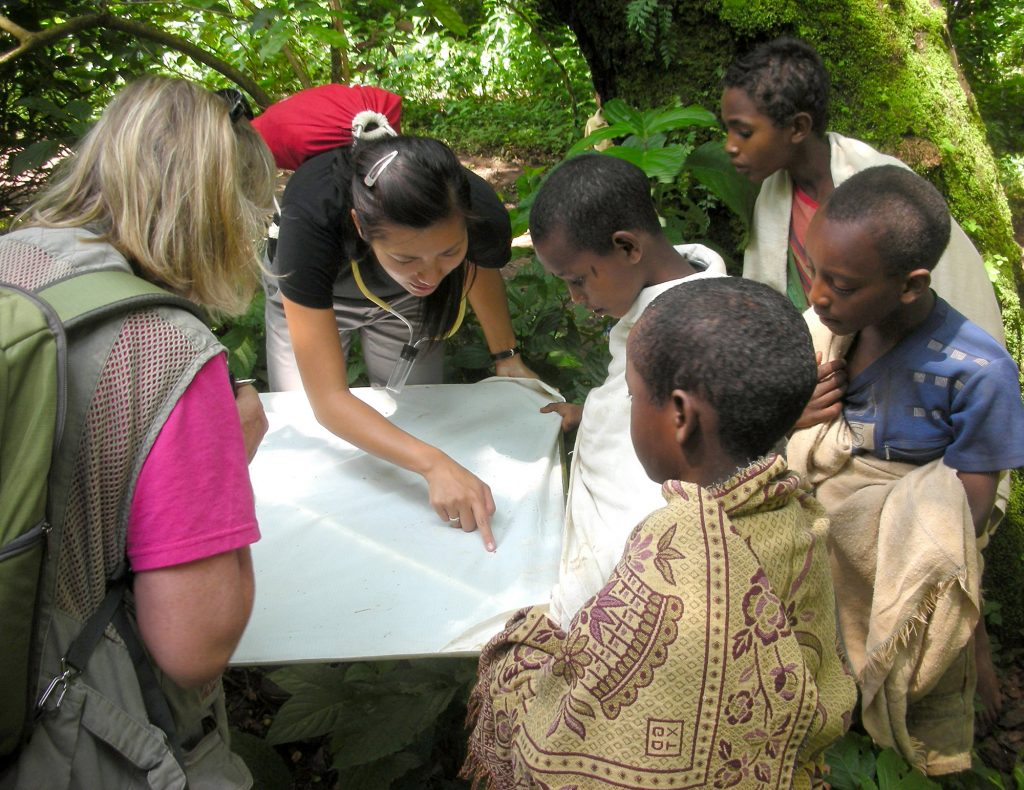 showing insects to children