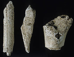 bone shaving artifacts
