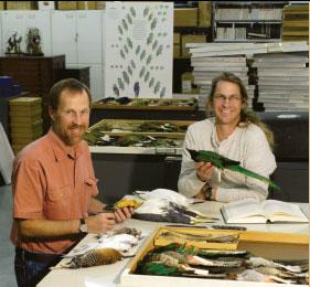 David Steadman and Andrew Kratter