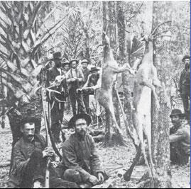 deer hunting camp
