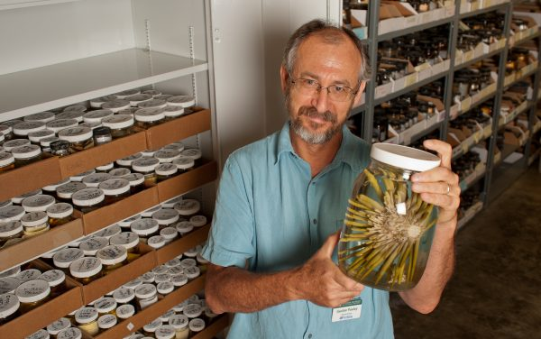 Gustav Paulay with specimens