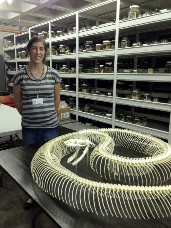 Reichart standing next to the python skeleton