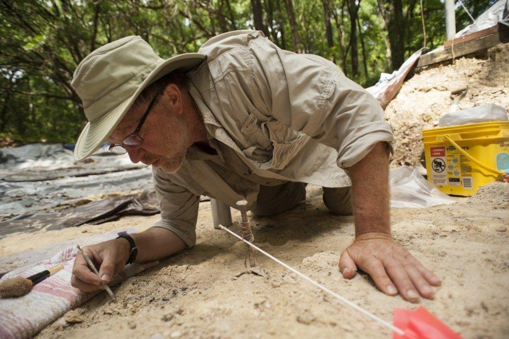 Steadman digging