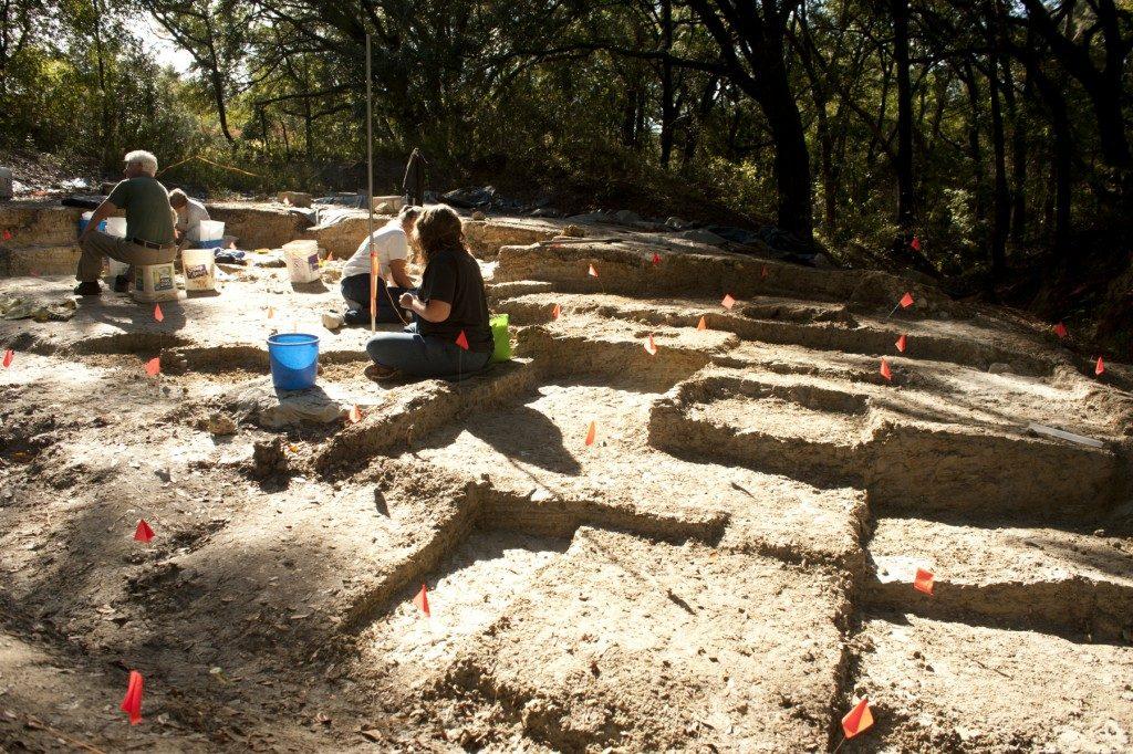 volunteers digging plots of various depths