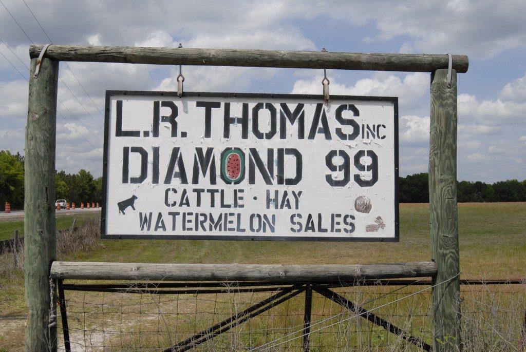 Sign reading L.R. Thomas Inc. Diamond 99, cattle, hay, watermelon sales