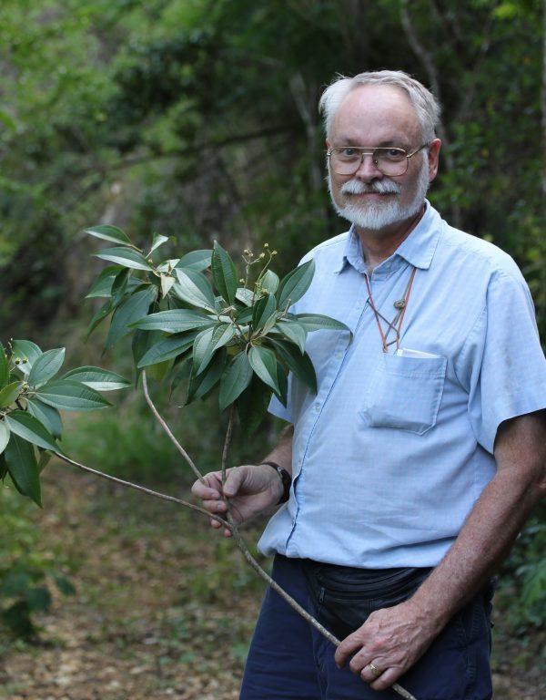 Walter Judd holding a branch