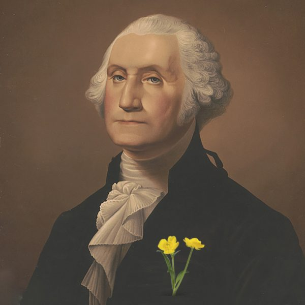 illustration of George Washington with buttercup flowers in chest pocket