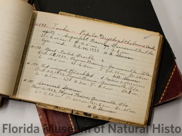 Old Ornithology journal