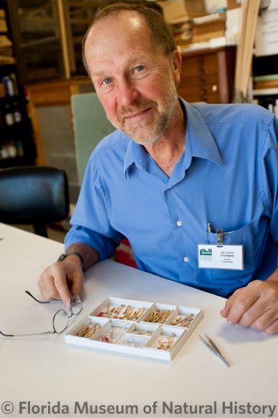David Steadman in ornithology
