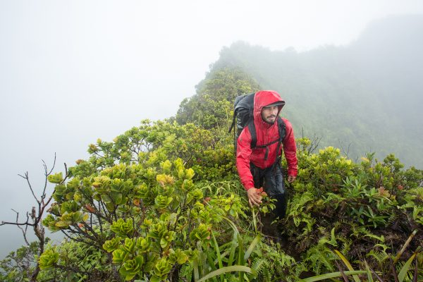 man hiking verdant moutain ridge