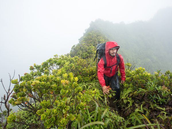 man hiking verdant moutain ridge