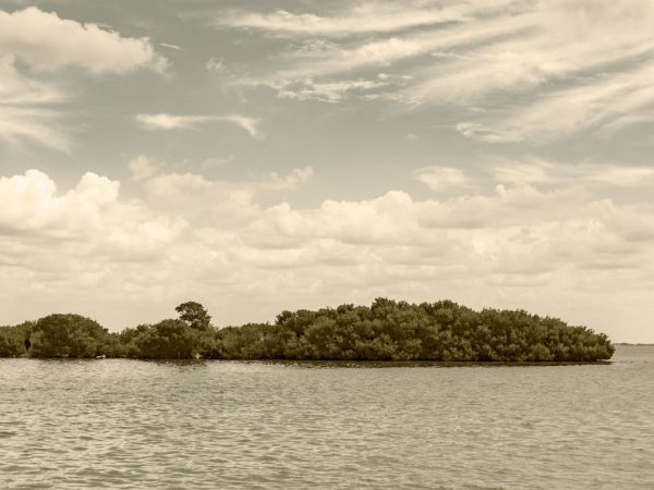 sepia photo of an island from the water