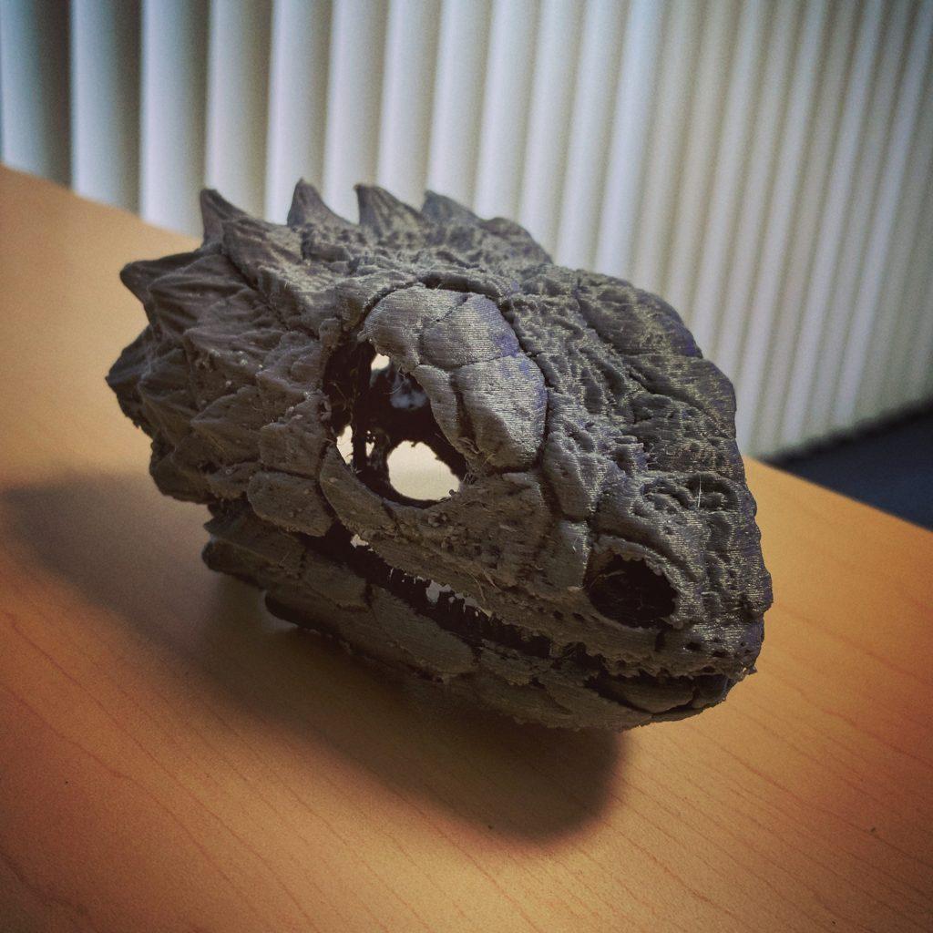 3-D printed giant girdled lizard skull