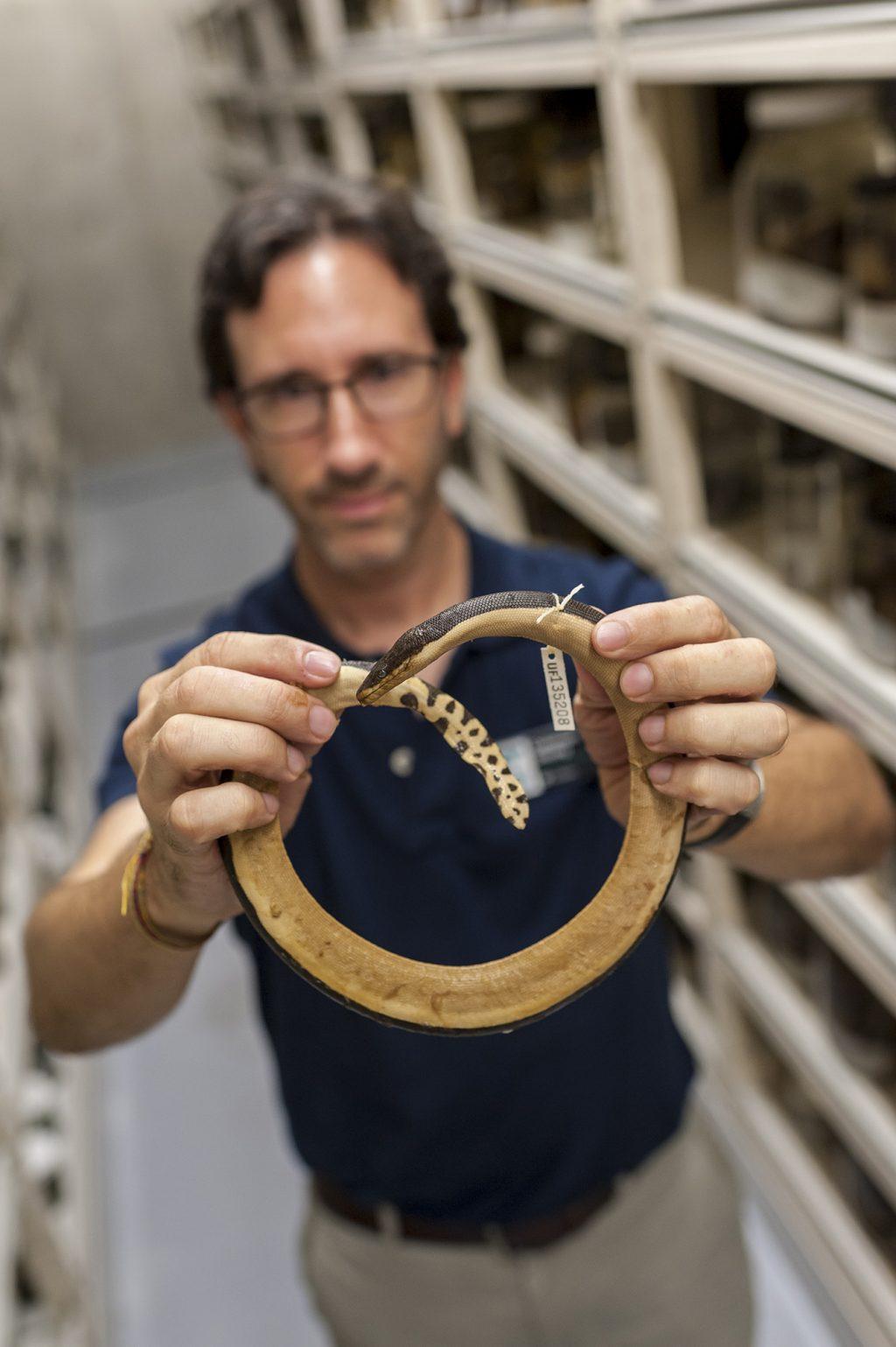 man holding snake specimen