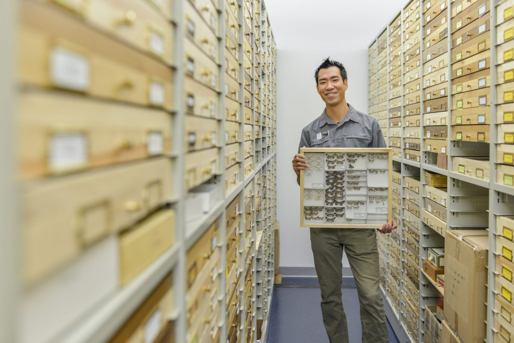 man holding specimen drawer