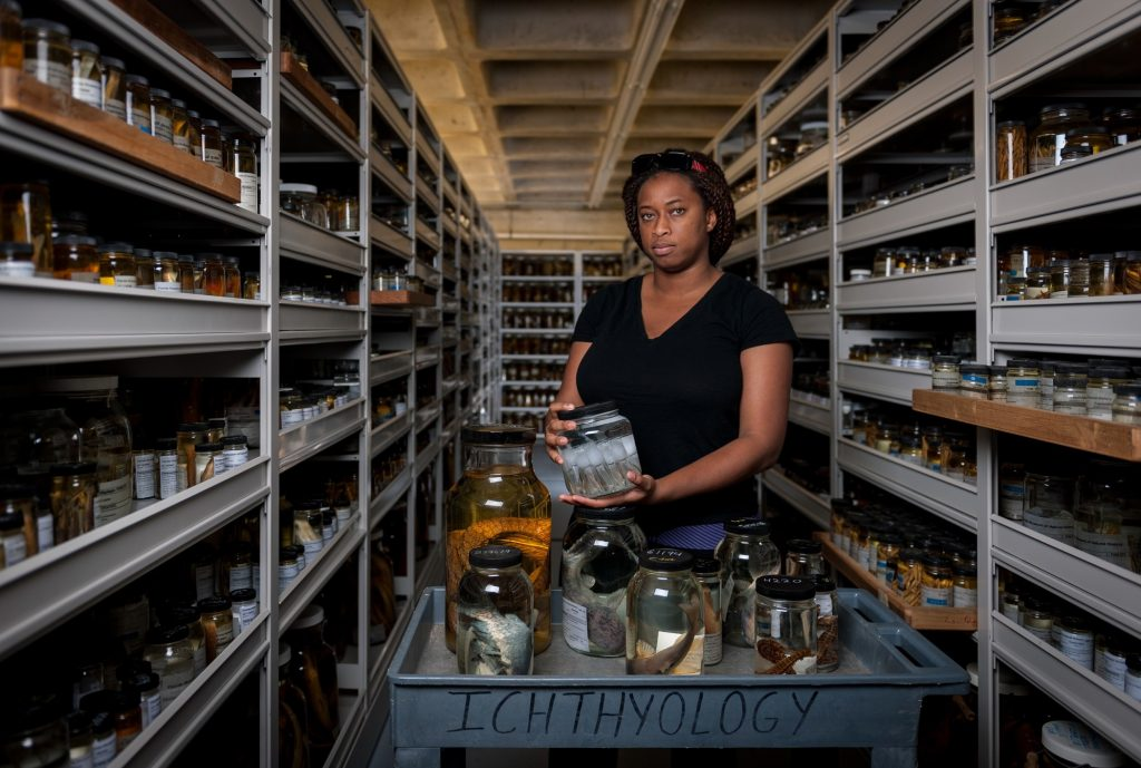 Adania Flemming in the ichthyology collection