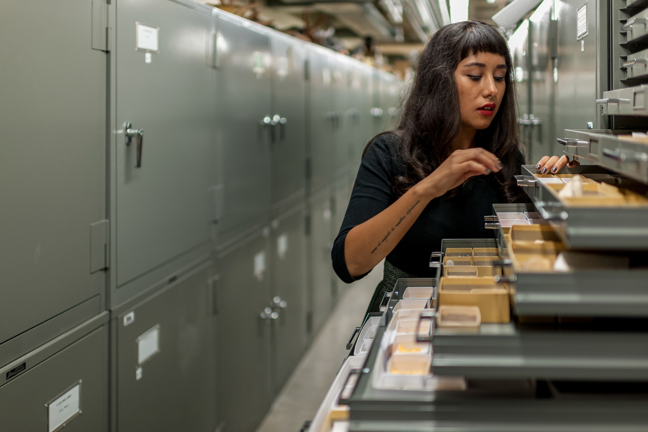 Michelle Barboza looking through collection drawers