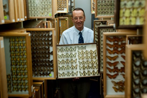 Thomas Emmel displays some of the donated specimens