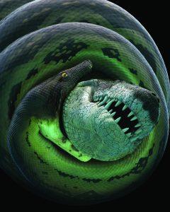 titanoboa attacking prey