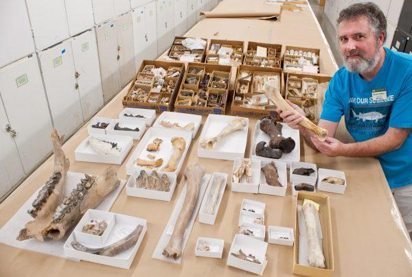 Richard Hulbert with donated fossils