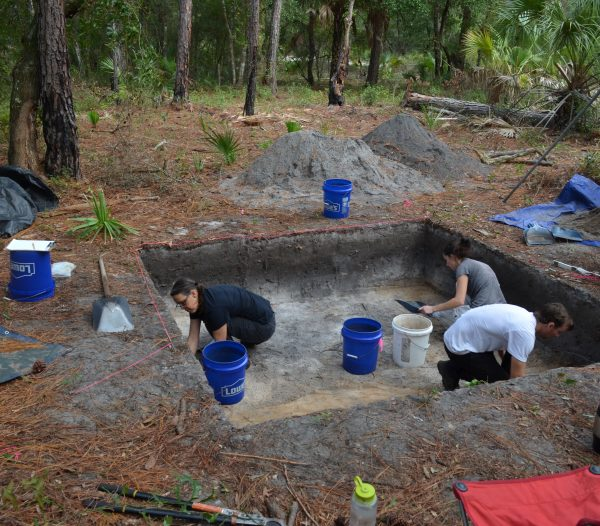 students excavate dig site
