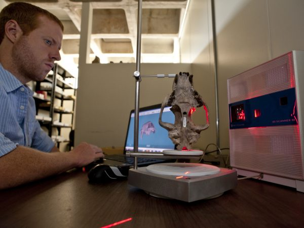 scientist scans fossil