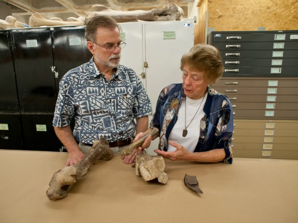 Two researchers look over a fossil
