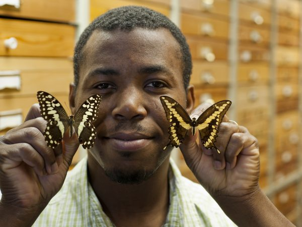 Delano Lewis with butterfly specimens