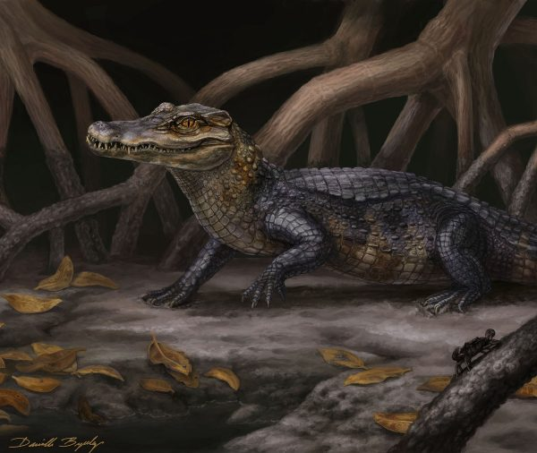 crocodillian illustration