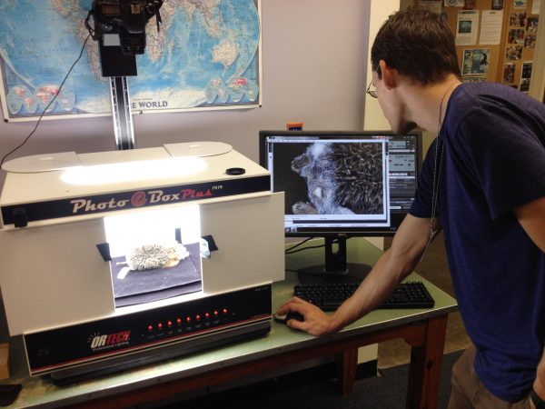 Zachary Randall uses an imaging system