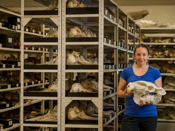 Verity Mathis in the mammals collection