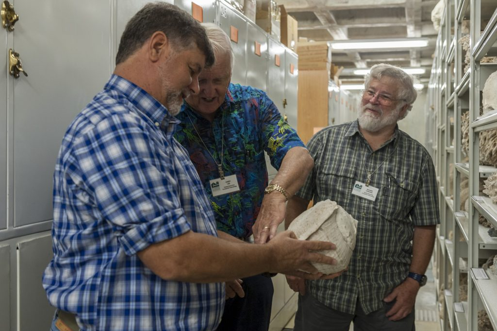Roger Portell, Harry Lee and Rick Edwards study shells in Dickinson Hall