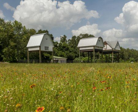 three bat houses on UF campus