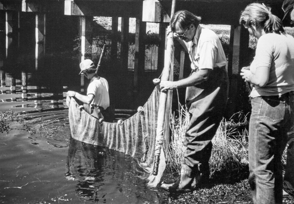 black-and-white photo of three people in river with net