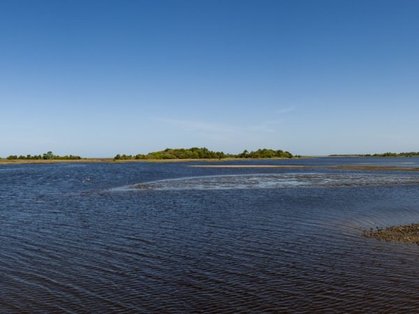 panoramic view of Cedar Keys