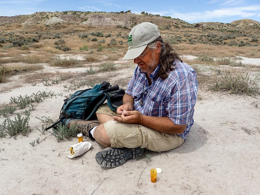 man sits on outcrop, packing fossils in pill bottles