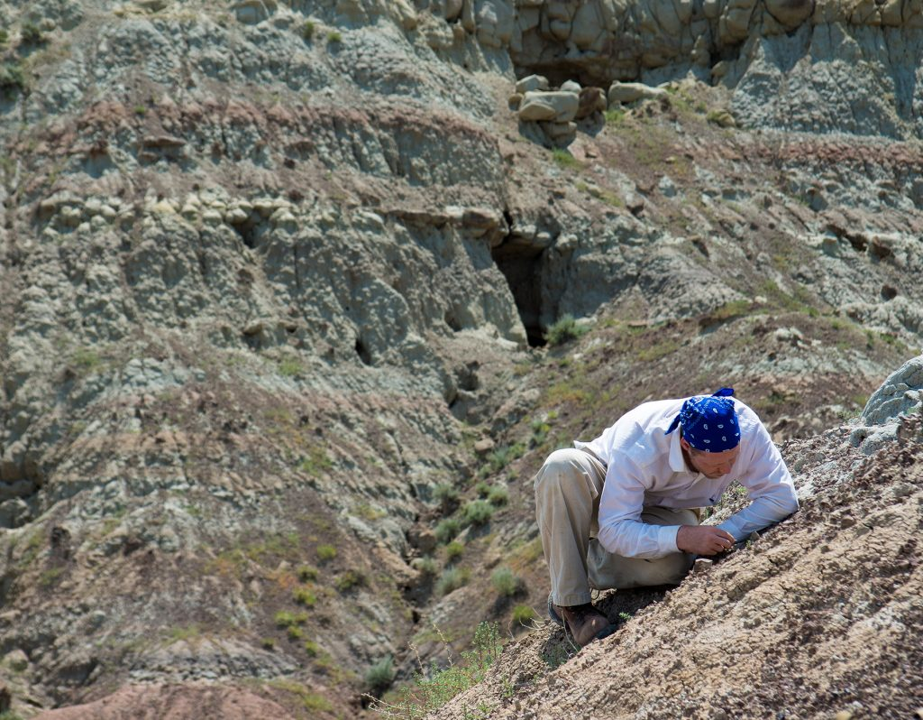 man crouches on butte, looking for fossils