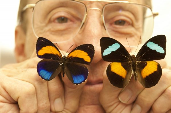 Tom holding two colorful butterflies