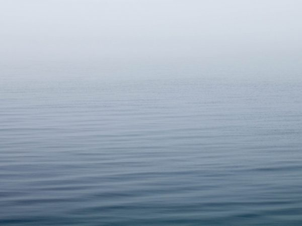 calm water with heavy fog