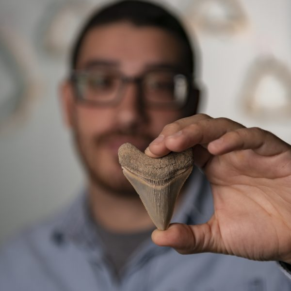 man holds shark tooth