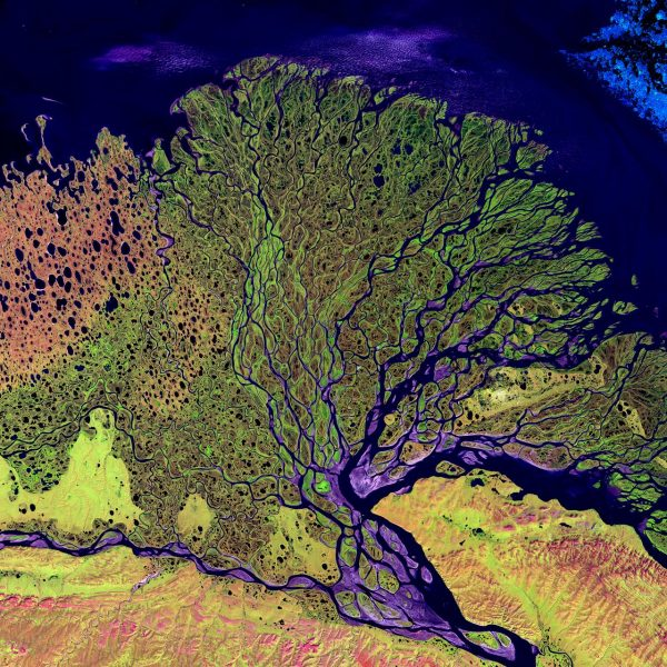 satellite image of river delta